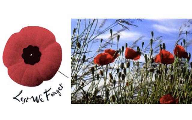 Ноябрь - месяц памяти и чествования ветеранов